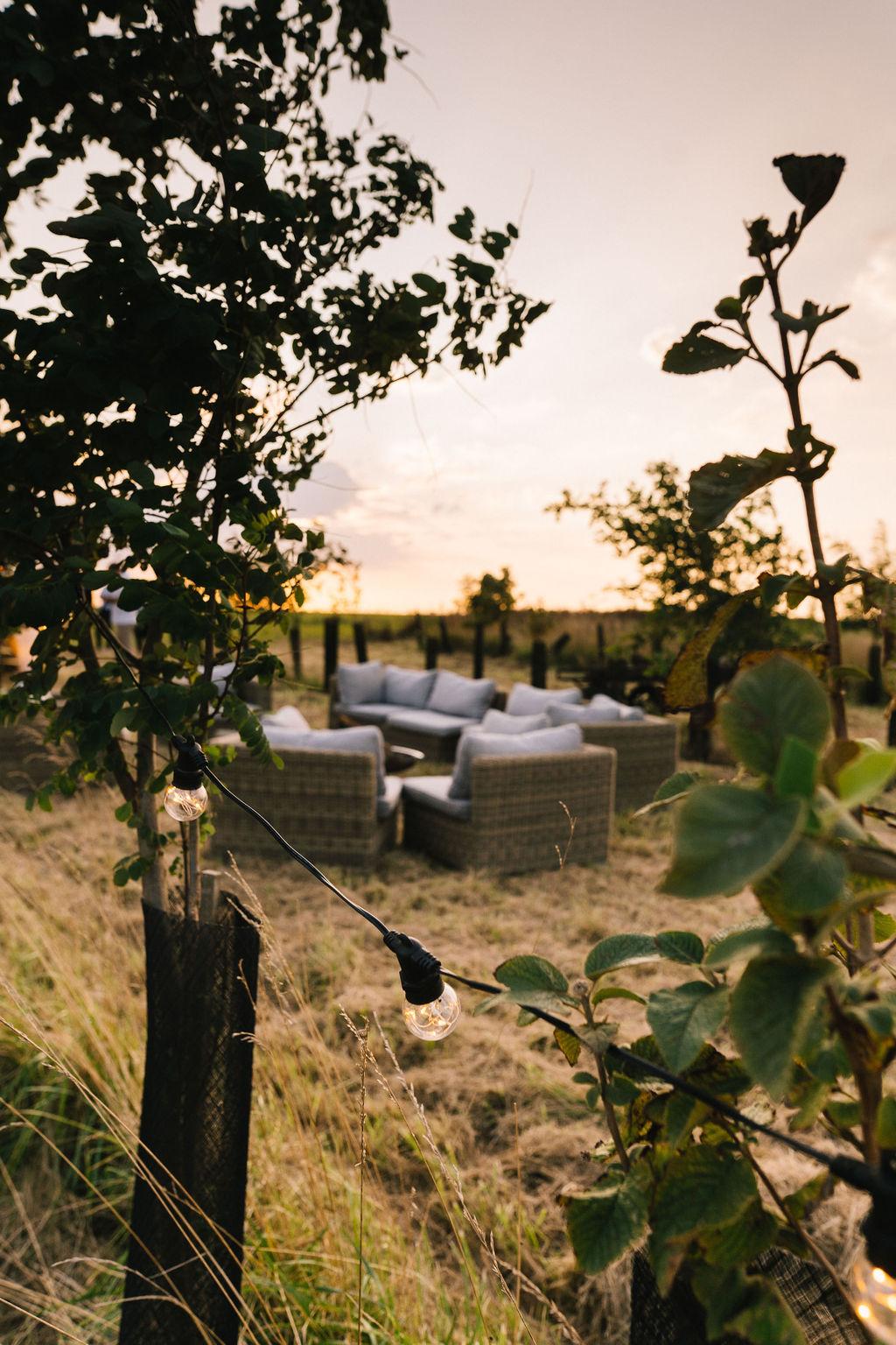 salon dans un champ